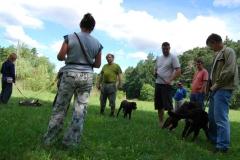 Školka psů - LÉTO 2012