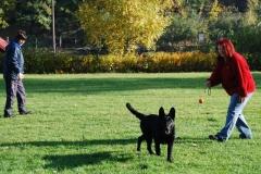 Školka psů - PODZIM 2009
