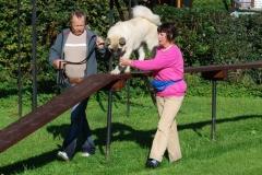Školka psů - PODZIM 2011